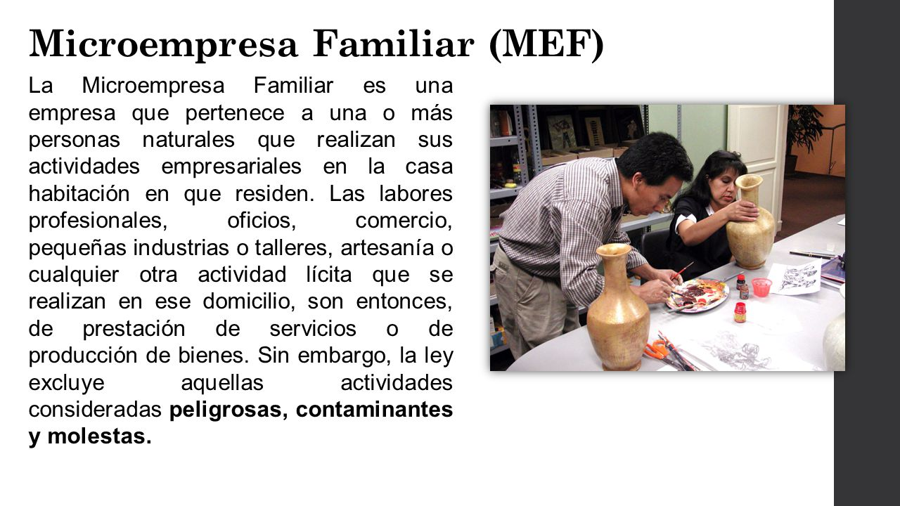 Microempresa Familiar (MEF)