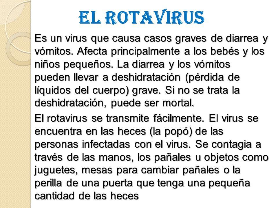 EL ROTAVIRUS