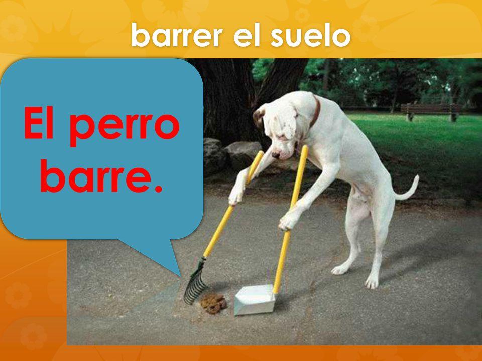 barrer el suelo El perro barre.