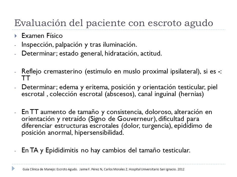 Evaluación del paciente con escroto agudo