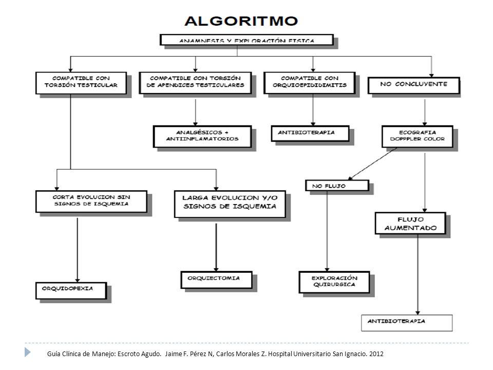 Guía Clínica de Manejo: Escroto Agudo. Jaime F