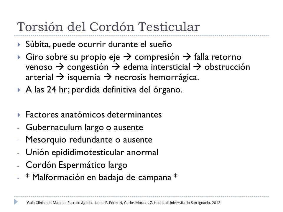 Torsión del Cordón Testicular