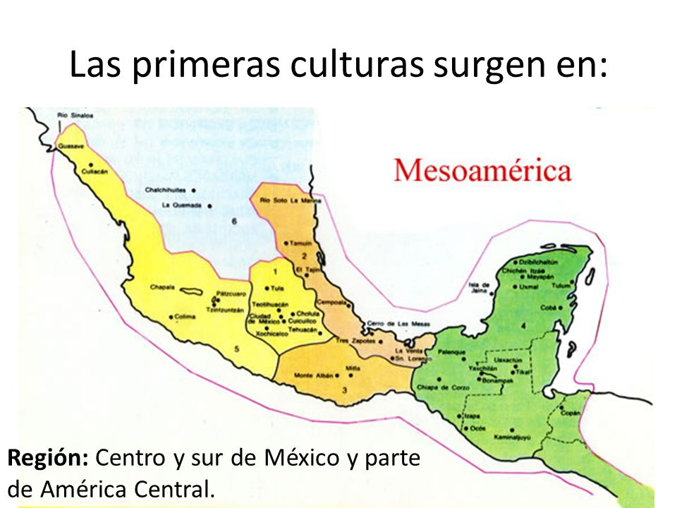 Las primeras culturas surgen en:
