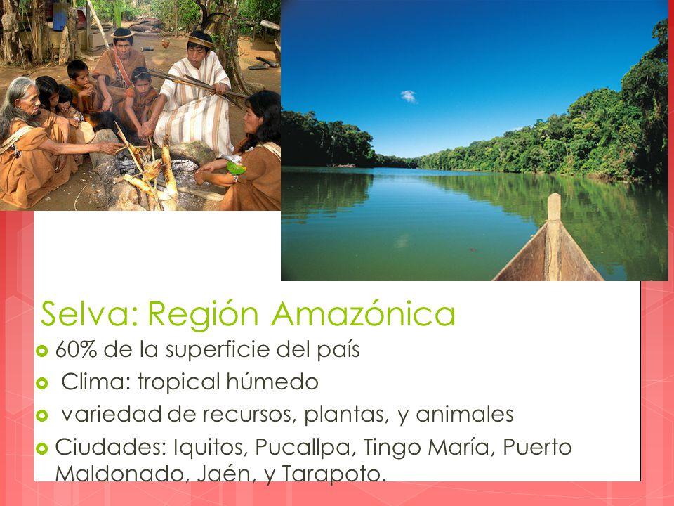 Selva: Región Amazónica