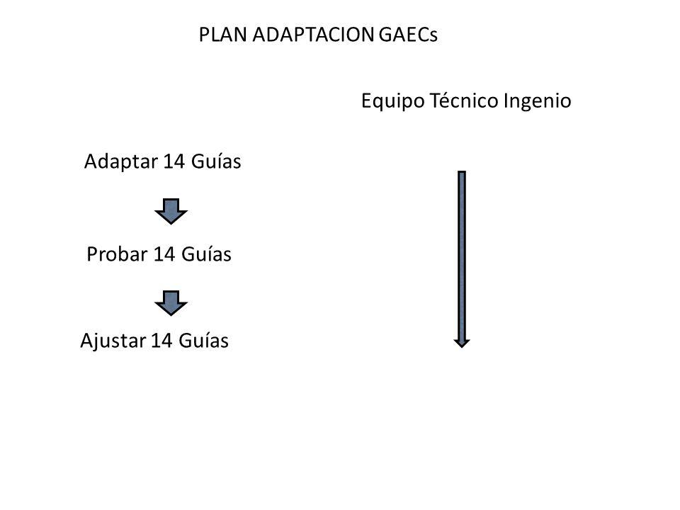 PLAN ADAPTACION GAECs Equipo Técnico Ingenio Adaptar 14 Guías Probar 14 Guías Ajustar 14 Guías