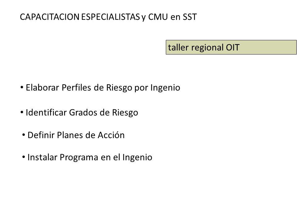 CAPACITACION ESPECIALISTAS y CMU en SST