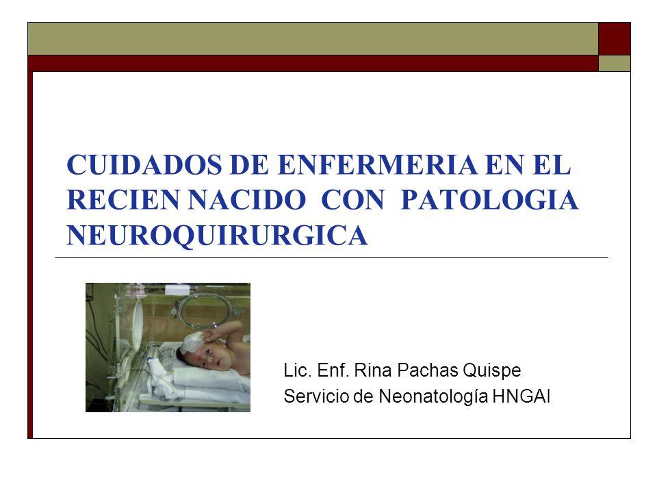 Lic. Enf. Rina Pachas Quispe Servicio de Neonatología HNGAI