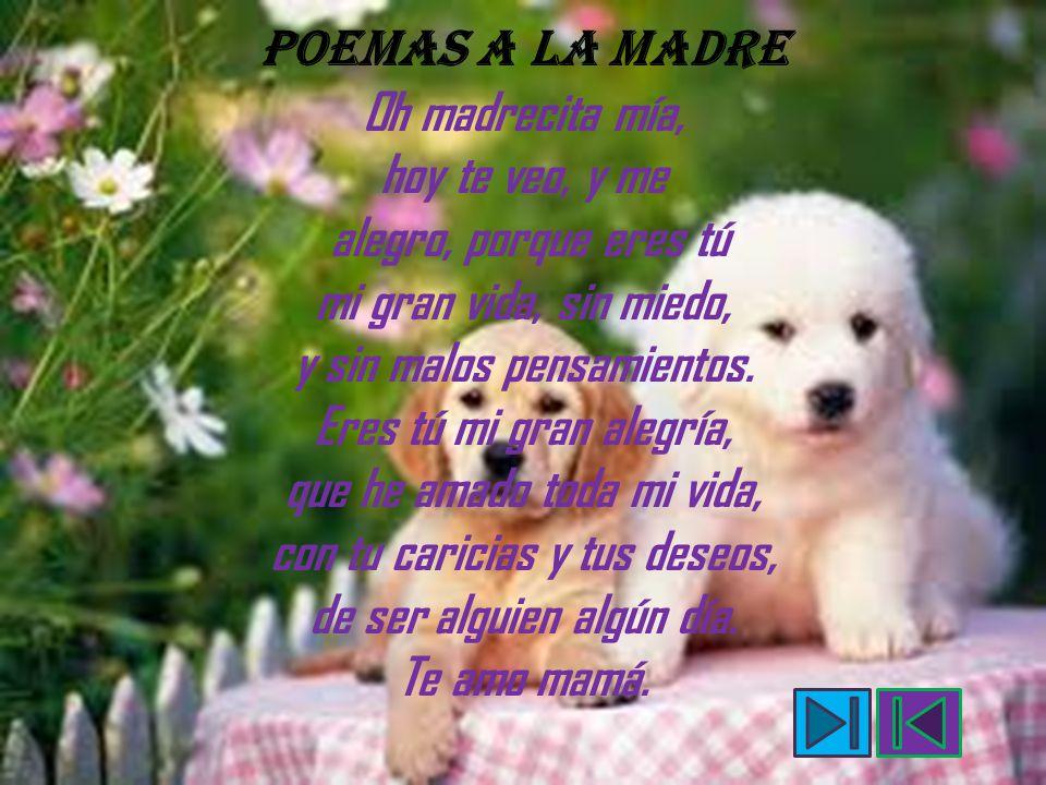 POEMAS A LA MADRE Oh madrecita mía, hoy te veo, y me alegro, porque eres tú mi gran vida, sin miedo, y sin malos pensamientos.