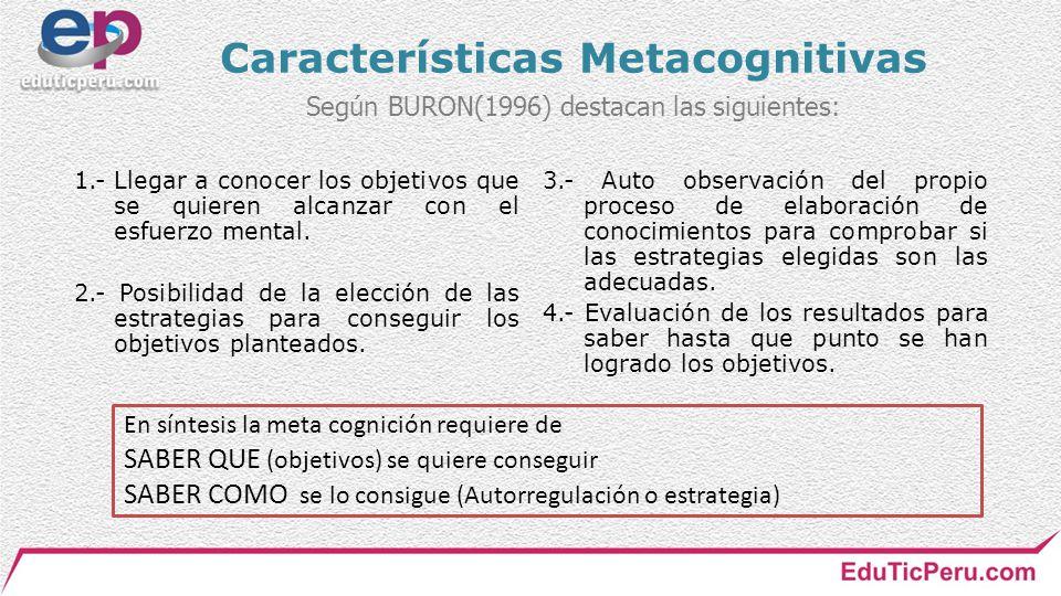 Características Metacognitivas