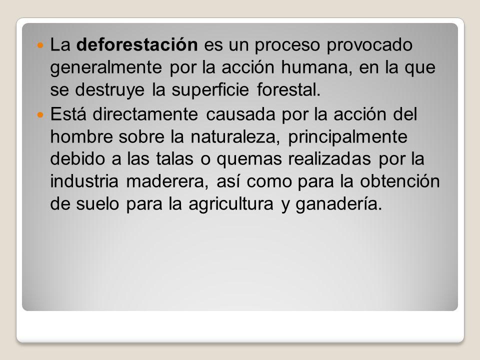 La deforestación es un proceso provocado generalmente por la acción humana, en la que se destruye la superficie forestal.