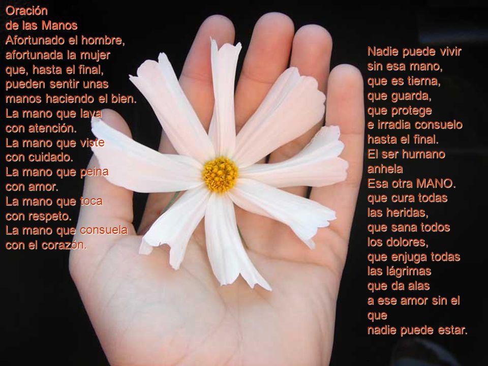 Oración de los manos. - ppt descargar