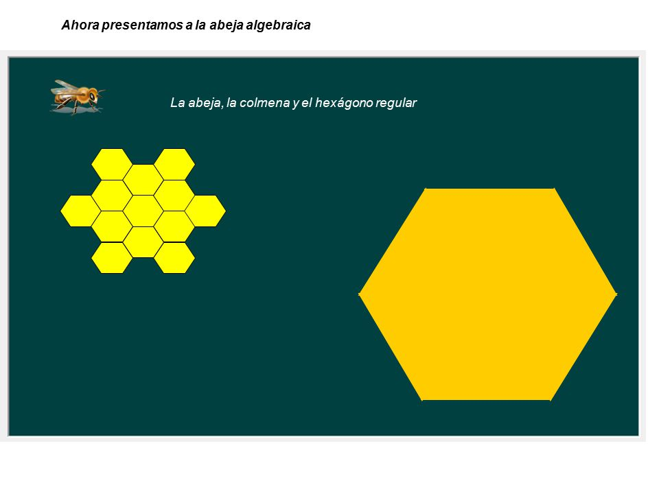 Ahora presentamos a la abeja algebraica