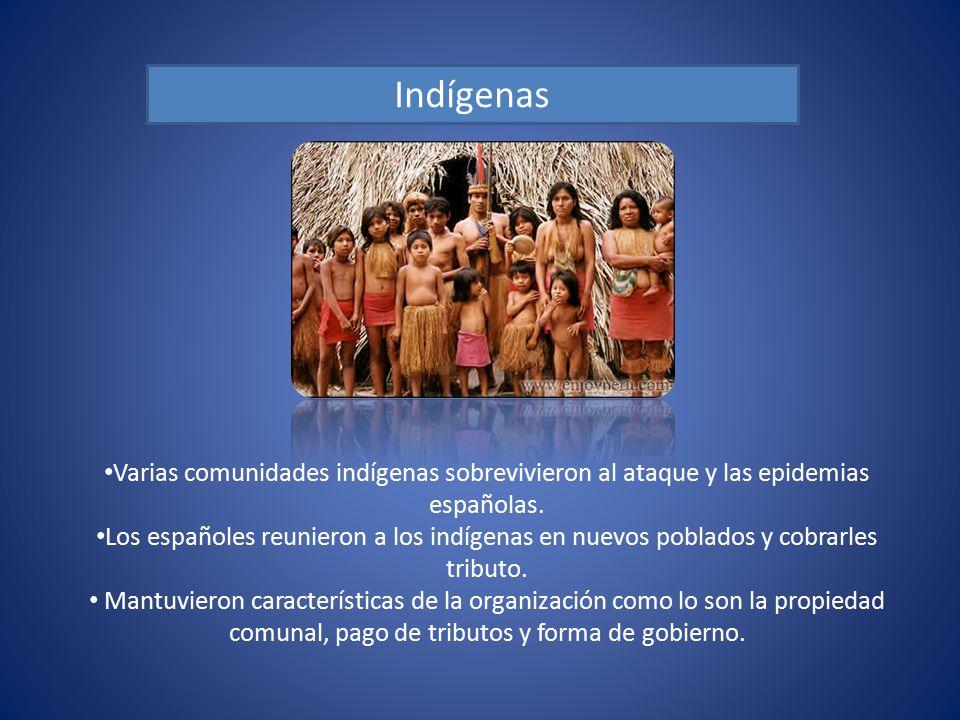 Indígenas Varias comunidades indígenas sobrevivieron al ataque y las epidemias españolas.