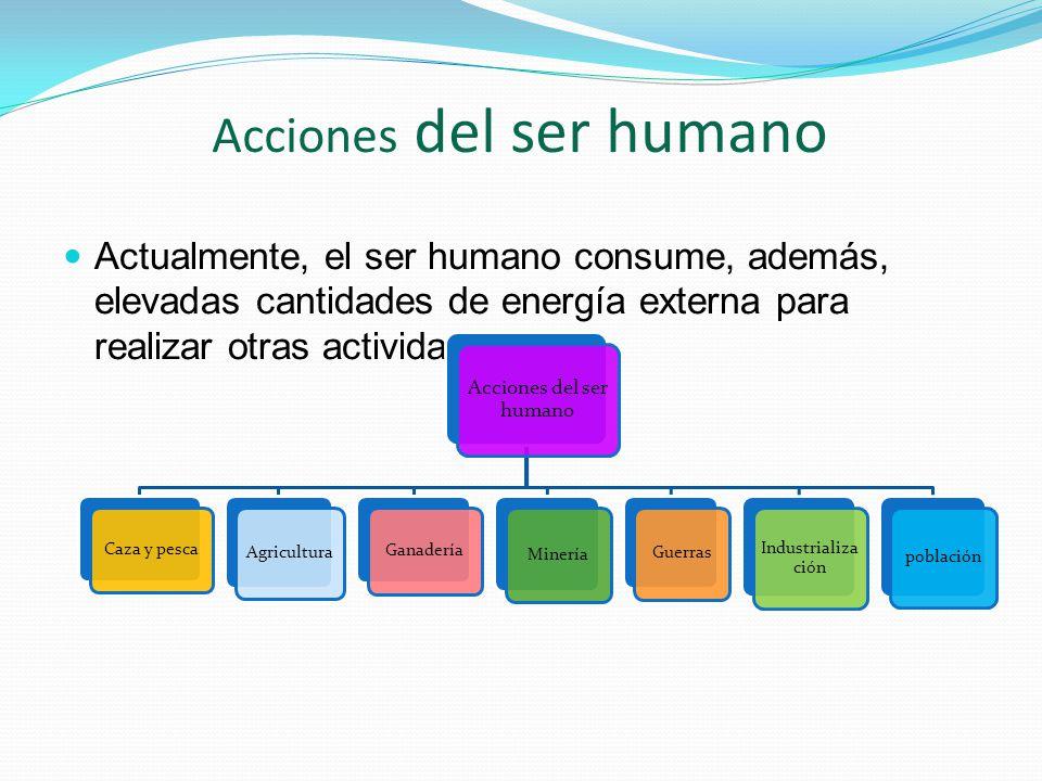 Acciones del ser humano