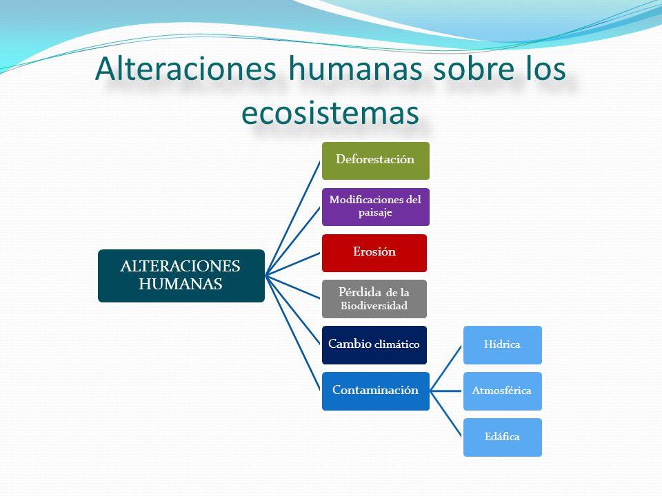 Alteraciones humanas sobre los ecosistemas