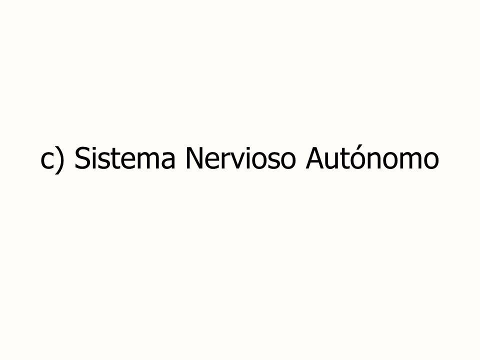 c) Sistema Nervioso Autónomo