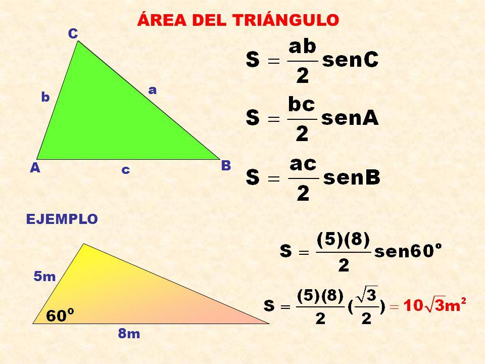 ÁREA DEL TRIÁNGULO C a b A B c EJEMPLO 5m 8m
