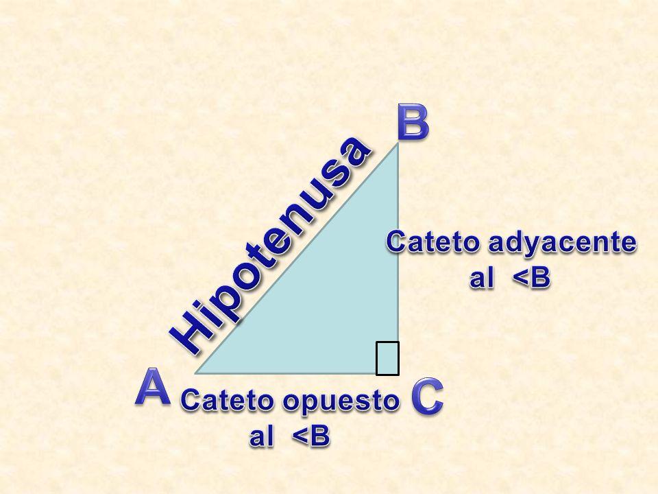 B Hipotenusa Cateto adyacente al <B A C Cateto opuesto al <B