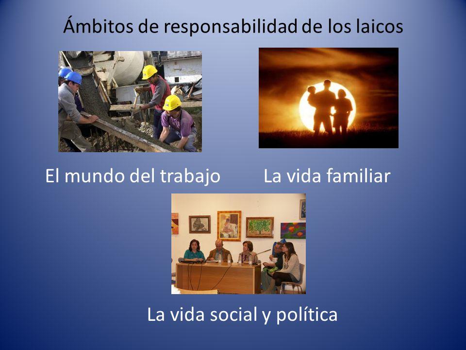 Ámbitos de responsabilidad de los laicos