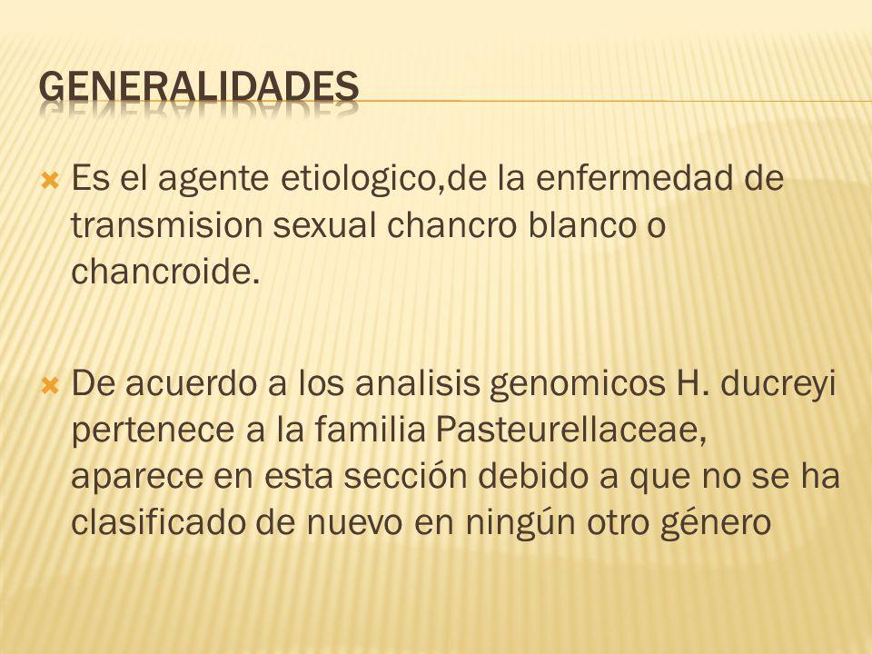 Generalidades Es el agente etiologico,de la enfermedad de transmision sexual chancro blanco o chancroide.