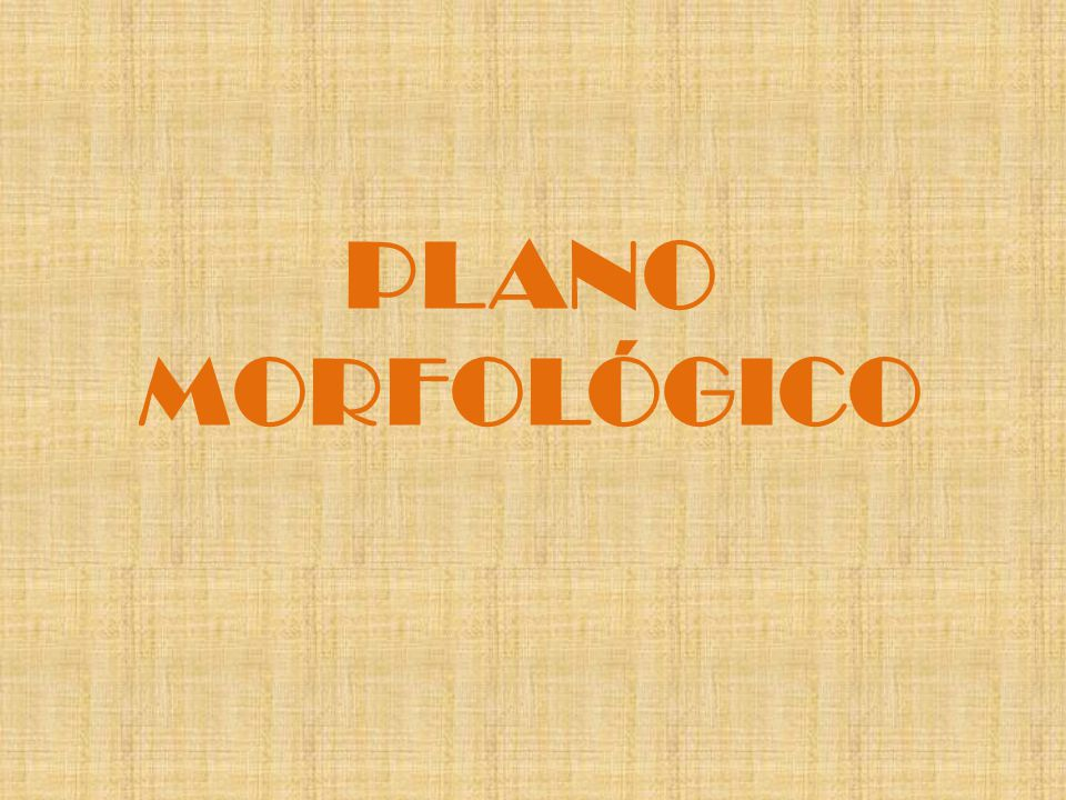 PLANO MORFOLÓGICO