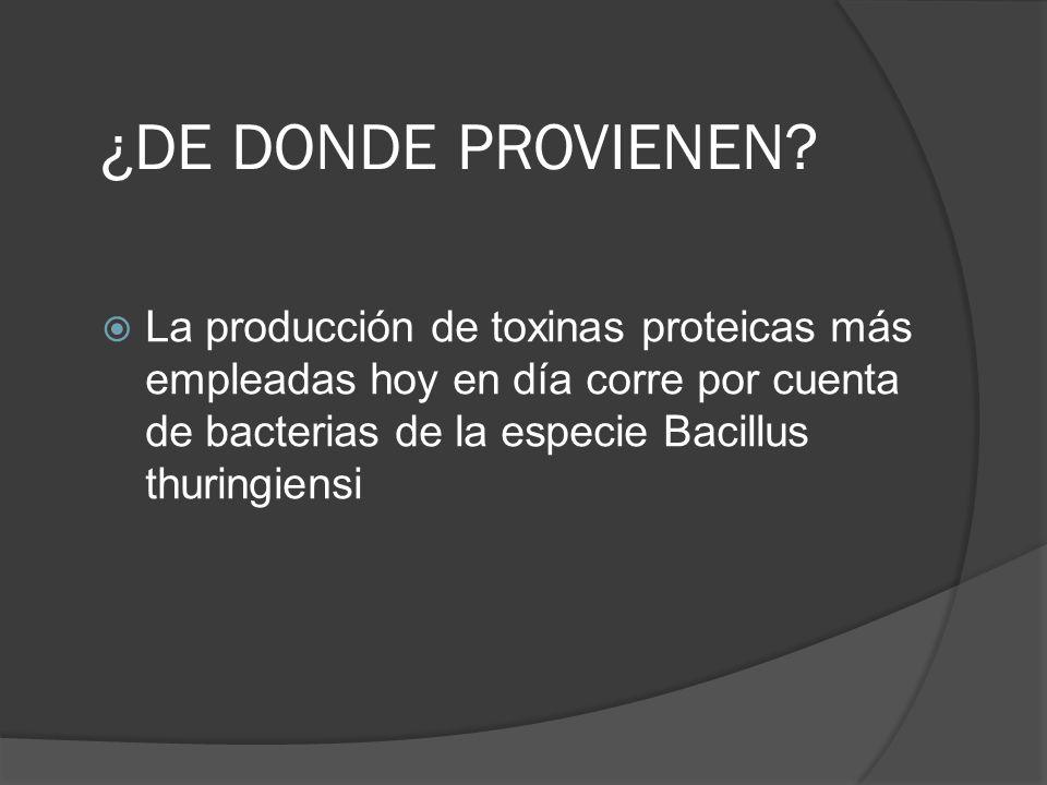 PROTEINAS BIOPESTICIDAS - ppt descargar