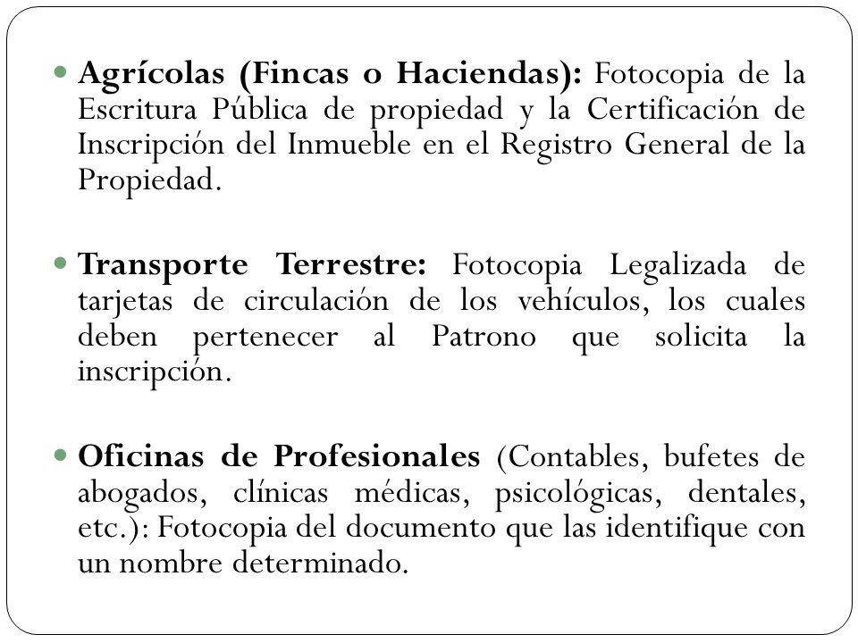 Criterios y requisitos del igss ppt descargar for Oficinas del registro de la propiedad