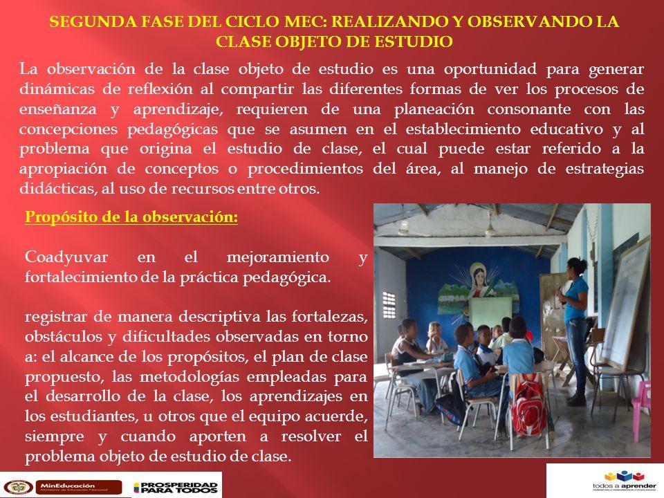 SEGUNDA FASE DEL CICLO MEC: REALIZANDO Y OBSERVANDO LA CLASE OBJETO DE ESTUDIO