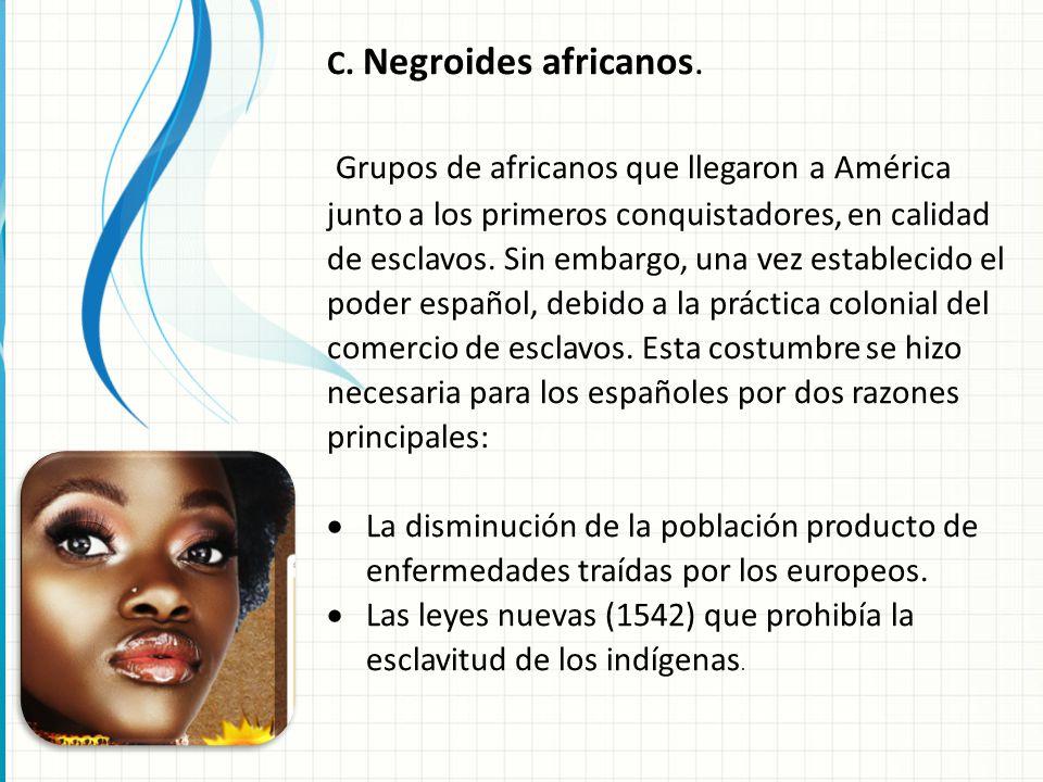 C. Negroides africanos.
