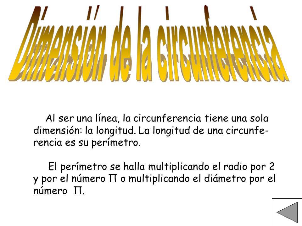 Dimensión de la circunferencia