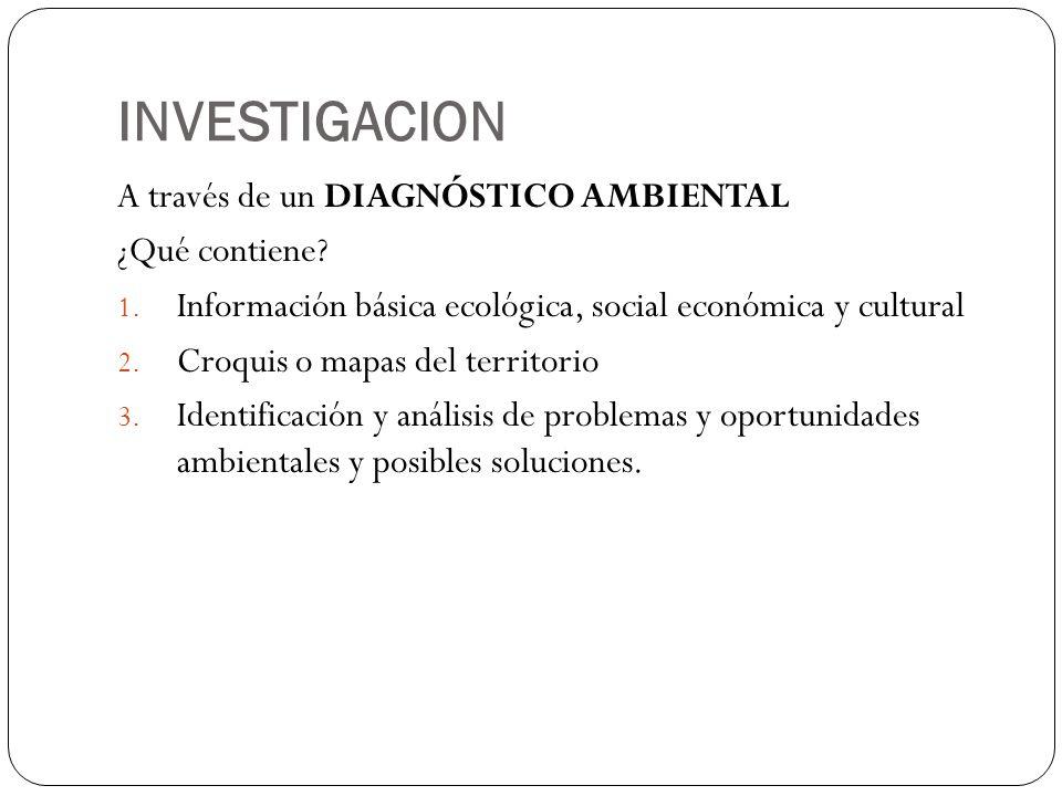 INVESTIGACION A través de un DIAGNÓSTICO AMBIENTAL ¿Qué contiene