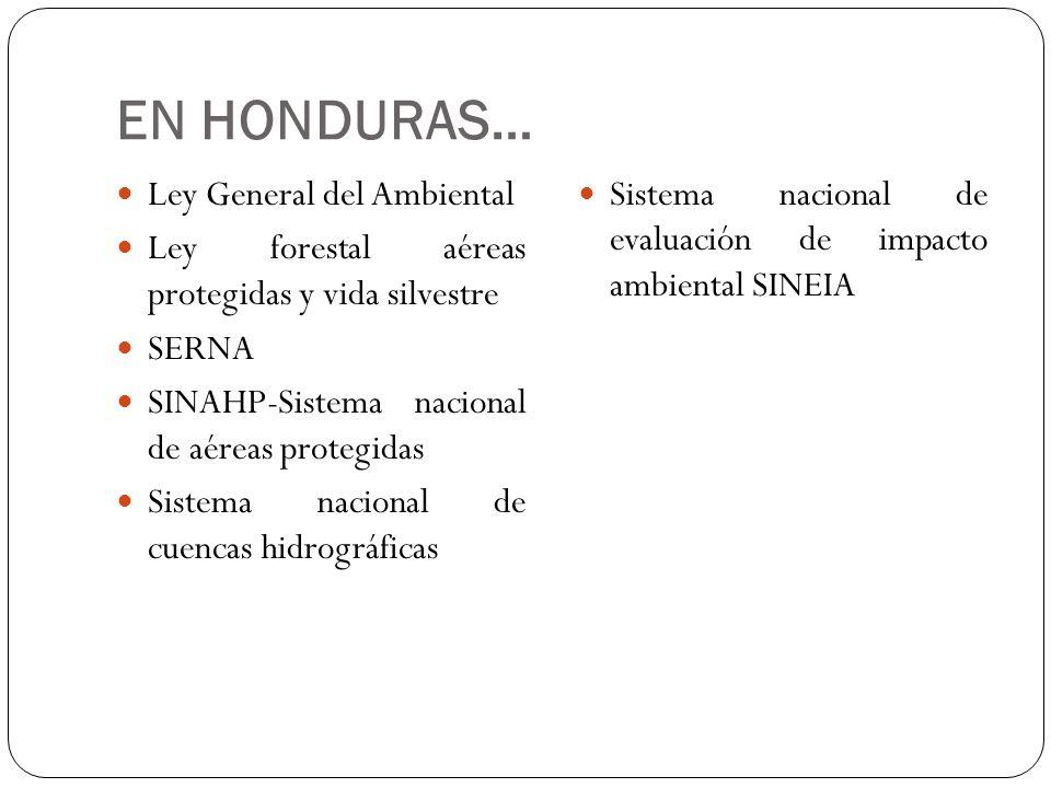 EN HONDURAS… Ley General del Ambiental
