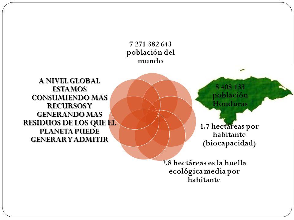 1.7 hectáreas por habitante (biocapacidad)