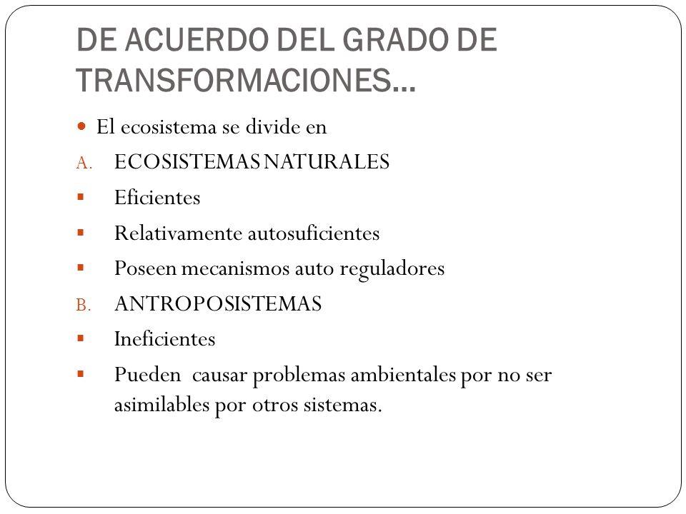 DE ACUERDO DEL GRADO DE TRANSFORMACIONES…