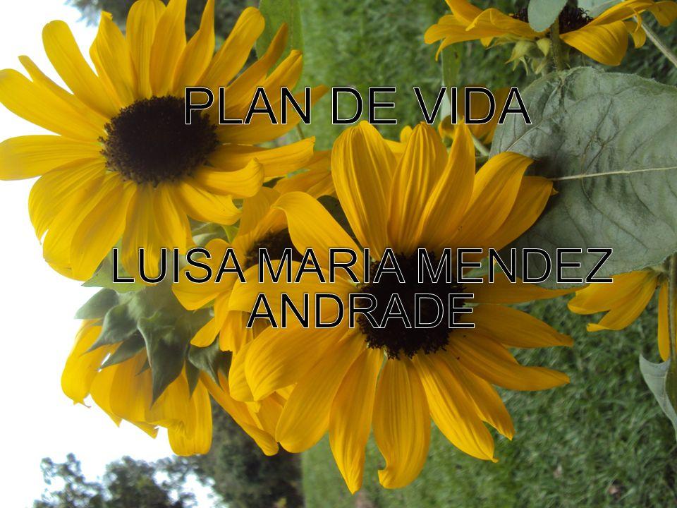 LUISA MARIA MENDEZ ANDRADE