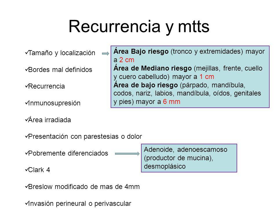 Recurrencia y mtts Tamaño y localización
