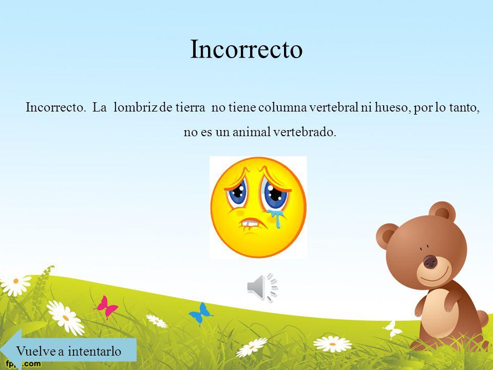 Los Animales Vertebrados e Invertebrados - ppt descargar