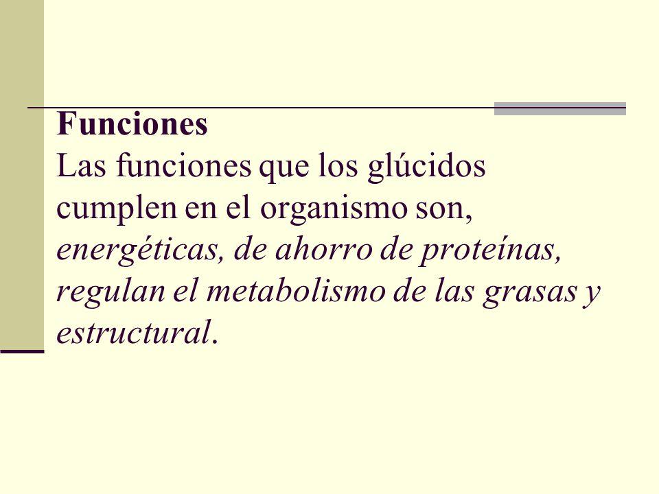 Funciones Las funciones que los glúcidos cumplen en el organismo son, energéticas, de ahorro de proteínas, regulan el metabolismo de las grasas y estructural.