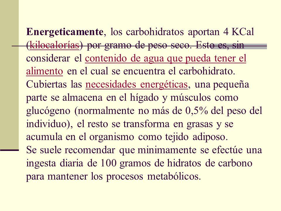 Energeticamente, los carbohidratos aportan 4 KCal (kilocalorías) por gramo de peso seco.