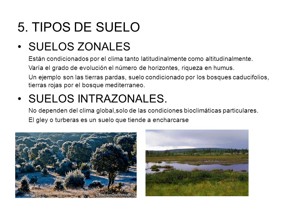 Recursos de la biosfera ppt video online descargar for Suelos y tipos de suelos