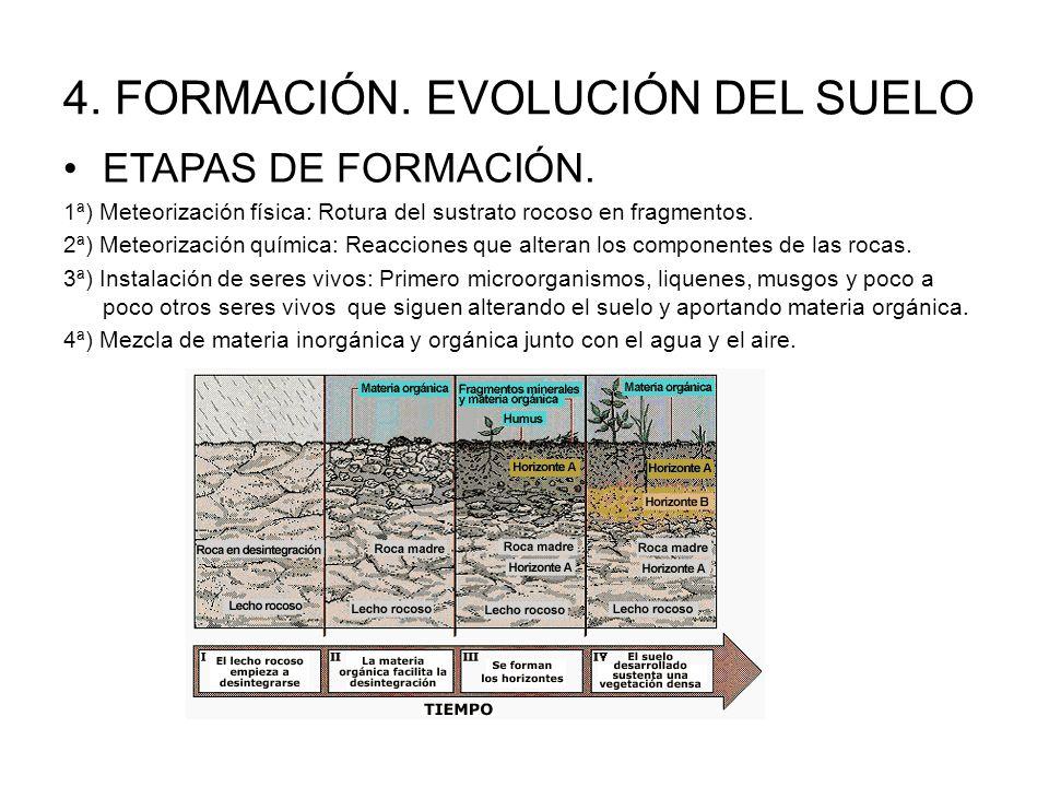 recursos de la biosfera ppt video online descargar