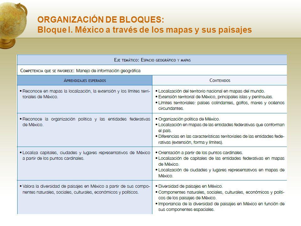 ORGANIZACIÓN DE BLOQUES: Bloque I