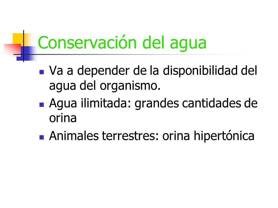 Conservación del agua Va a depender de la disponibilidad del agua del organismo. Agua ilimitada: grandes cantidades de orina.