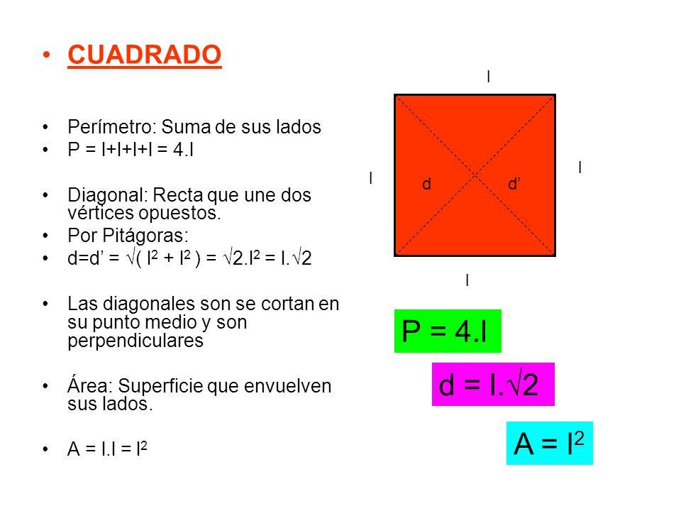 P = 4.l d = l.√2 A = l2 CUADRADO Perímetro: Suma de sus lados