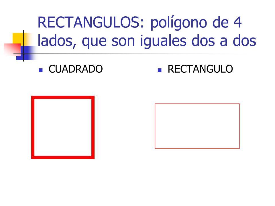 RECTANGULOS: polígono de 4 lados, que son iguales dos a dos