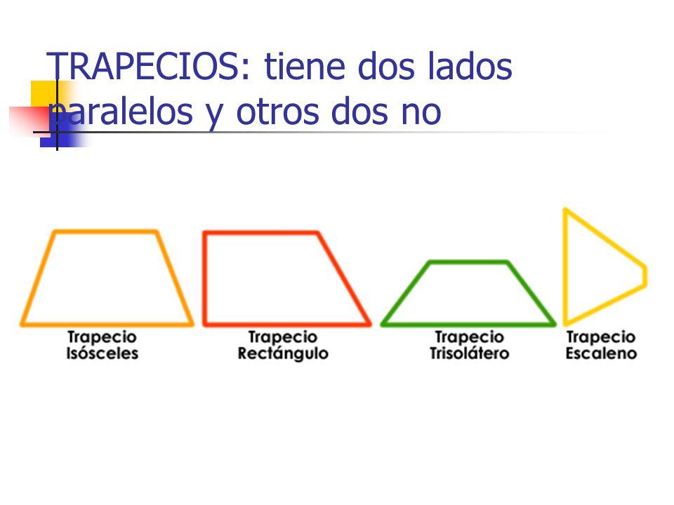 TRAPECIOS: tiene dos lados paralelos y otros dos no