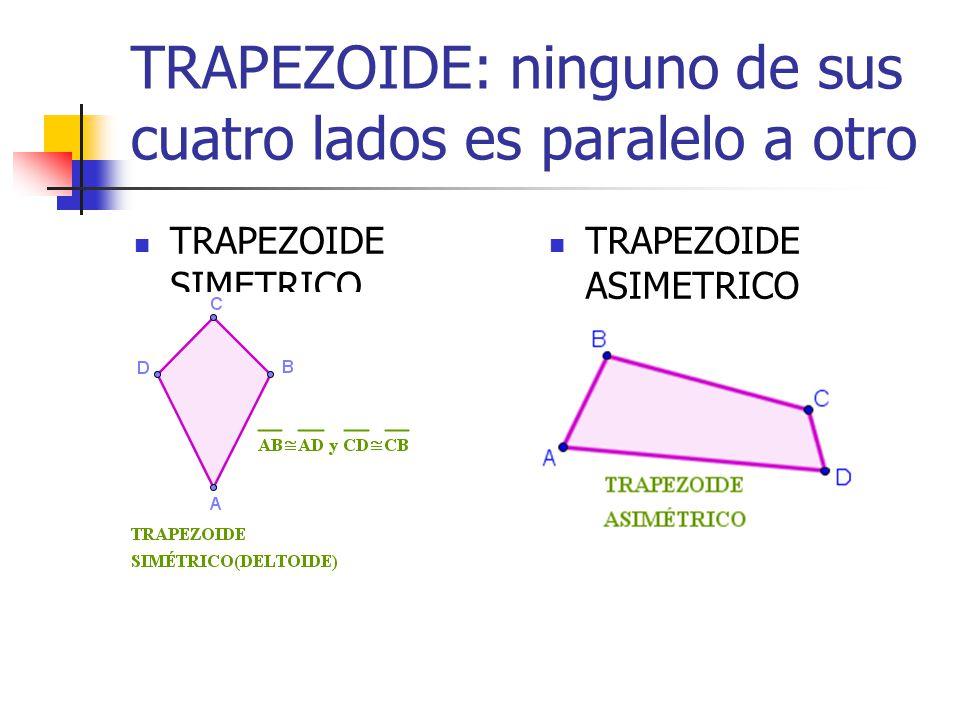 TRAPEZOIDE: ninguno de sus cuatro lados es paralelo a otro