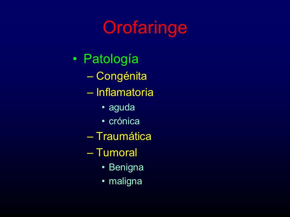 Orofaringe Patología Congénita Inflamatoria Traumática Tumoral aguda