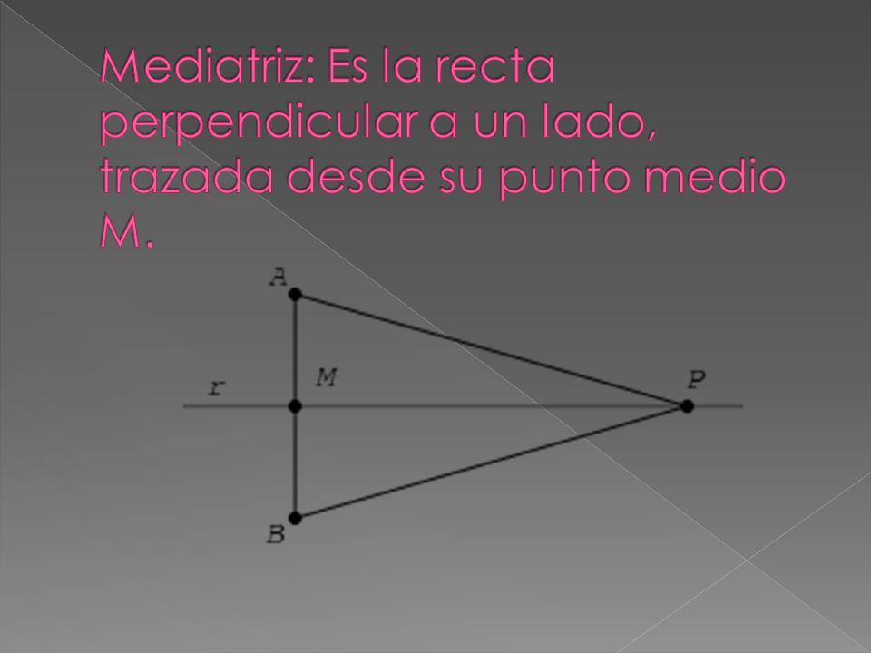 Mediatriz: Es la recta perpendicular a un lado, trazada desde su punto medio M.