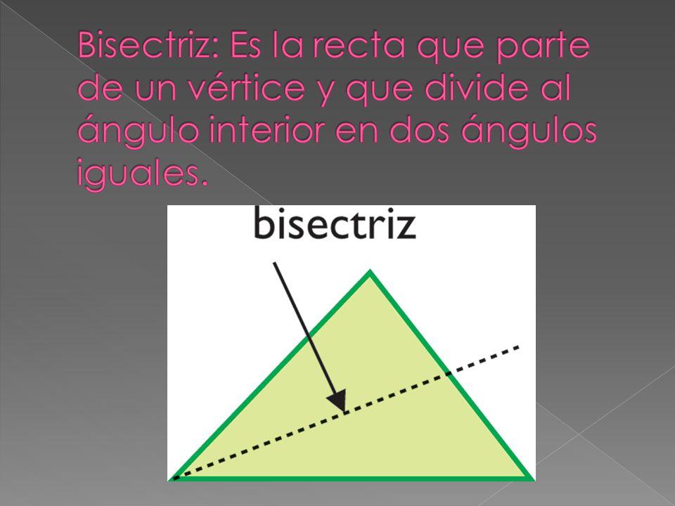 Bisectriz: Es la recta que parte de un vértice y que divide al ángulo interior en dos ángulos iguales.